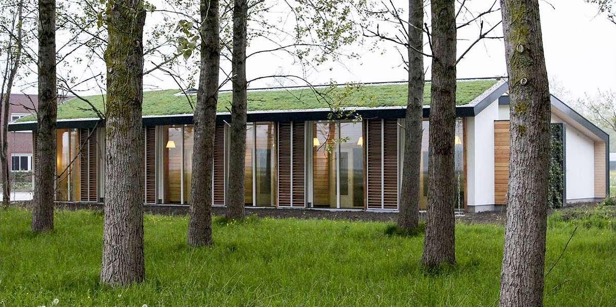 Biophilic architecture 004